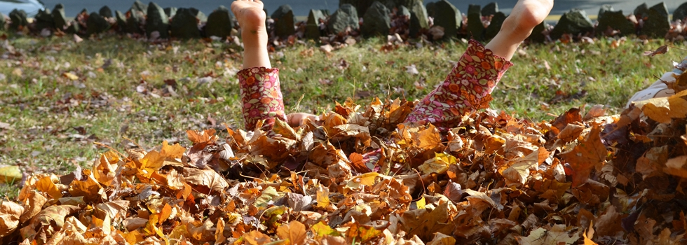 Child with feet sticking straight up out of a leaf pile